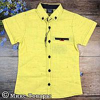 Желтая рубашка для мальчика Размеры: 5,6,7,8 лет (6347-4)