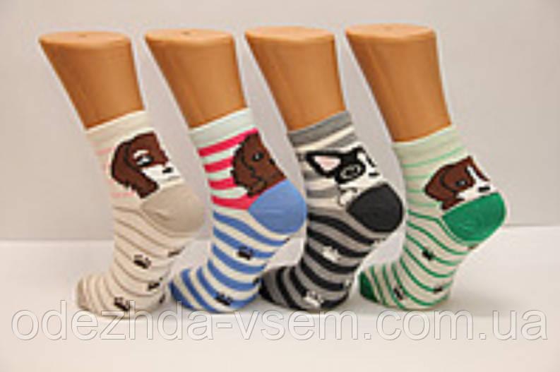 Носки с собачками на пятках Montebello Турция 35-38