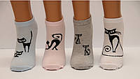Носки Подросток с котами в сетку 36-40
