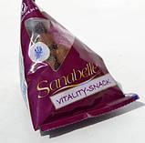 Лакомства для кошек Bosch (Бош) Sanabelle Vitality Snack (Санабелль Виталити ) 0.24 кг, фото 2