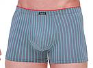 Трусы мужские Taso шорты 5579 ткань Modal (оптом)