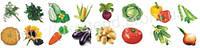 Набір Овочі (2319)