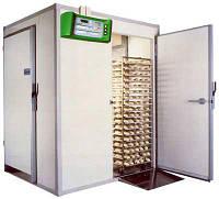 Камера холодильная для охлаждения и расстойки А4/Н24 TECNOMAC