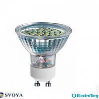 Светодиодная лампа MR16 3W, 5000K,  GU10 Svoya