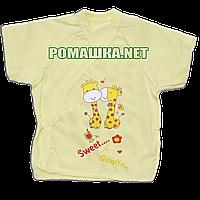 Распашонка для новорожденного р. 56 короткий рукав ткань КУЛИР 100% тонкий хлопок ТМ Авекс 3171 Желтый А