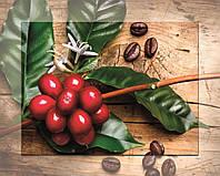 Картина на стекле Экзотический фрукт 40*50 см