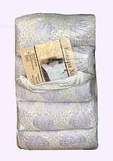 Летнее одеяло Холлофайбер+микрофибра 150*210 Лери Макс, фото 3