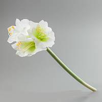 Искусственный цветок амариллис белый.