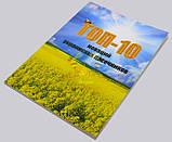ТОП-10 новаций украинских пасечников , фото 2