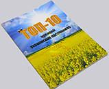 ТОП-10 новаций украинских пасечников , фото 3