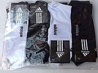 """Мужские носки """" Adidas """" низкие 41-45р."""