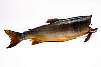 Рыба горбуша потрашеная холодного копчения б/г