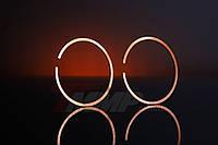 Кольца поршневые коричневые в пластиковой коробочке Goodluck 5800
