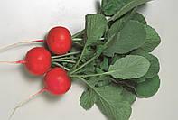 Семена редиса Глориэт F1 10 000 сем. Sakata