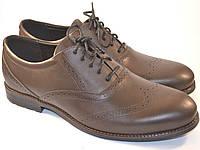 Туфли броги оксфорды кожа коричневые мужская обувь больших размеров Rosso Avangard BS Felicite Brown Leather, фото 1