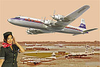 Сборная модель Roden Самолет DC-7C Японские авиалинии (RN303)