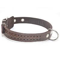 Ошейник для собак кожаный VIP 1 коричневый