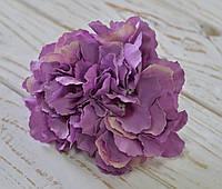 Головка цветка гортензии сиреневой