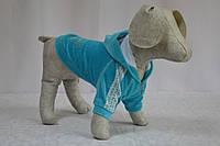 Толстовка для собак Велюр, фото 1