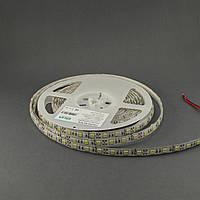 Светодиодная лента 5050/60 IP65 премиум белый, фото 1