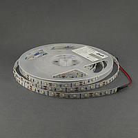 Светодиодная лента 3528/60 IP20 премиум, фото 1