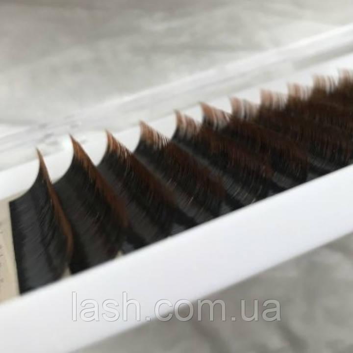 Ресницы омбре коричневые mix D 0.10 (8-12 мм) - коричневые кончики