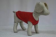 Маечка для собак Горошек, фото 1