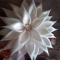 Цветок-резинка, белая