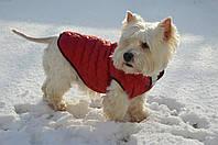 Жилет Стеганый для собак, фото 1