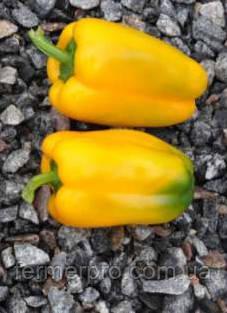 Семена перца Tриело (Triyello RZ F1 Rijk Zwaan желтый 1000 семян