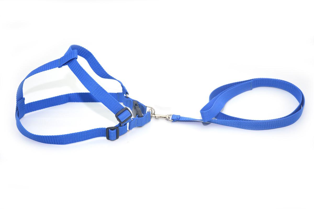 Комплект капроновый 2,0 Лорик средний для животных синий