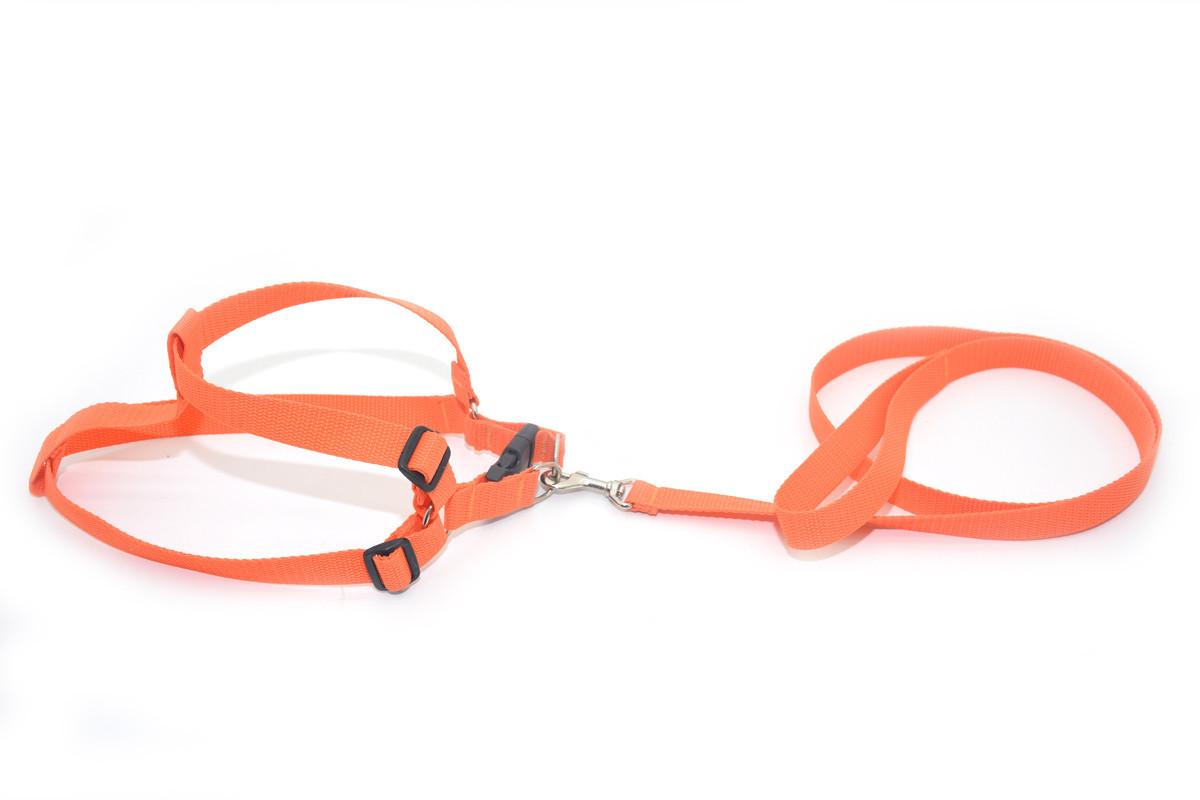 Комплект капроновый 2,0 Лорик средний для животных оранжевый