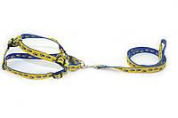 Комплект капроновый Лапки 2,0 для собак и котов голубовато-желтые