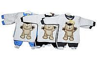 Костюм детский трикотахжный для мальчика двойка. Минибирд 316, фото 1