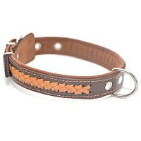Ошейник для собак кожаный VIP 1 коричневый + рыжий