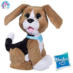 Говорящий щенок Чарли FurReal Friends Hasbro