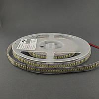 Светодиодная лента 3528/240 IP20 24В премиум, фото 1