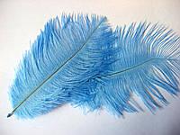 Перо страуса. Светло-синее от 14 до 23 см