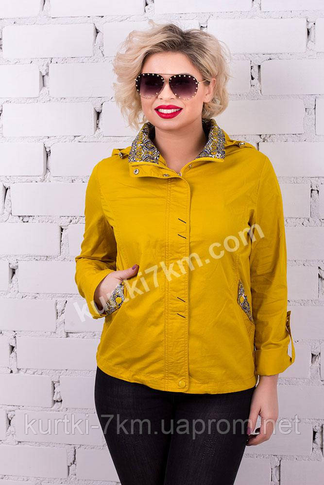 d7639bdfc91 Ветровка женская с капюшоном YLANNI №346 - Женские куртки