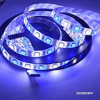 Светодиодная лента SMD 5050 RGBW (RGB+белый) 60LED/m IP20