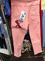 Детские лосины для девочек от 2 до 5 лет.Розового цвета с полоской сбоку