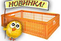 Ящики для перевезення живої птиці, фото 1