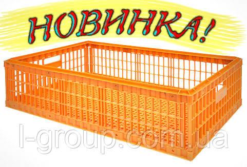 ящик для перевезення живої птиці без кришки