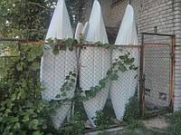 Байдара, Каяк, Стеклопластиковые + Весло, фото 1
