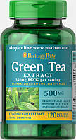 Экстракт Зеленого чая, Green Tea Standardized Extract 500 mg, Puritan's Pride, 120 капсул