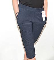Бриджи женские большие размеры - Узор, фото 2