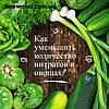 Як зменшити кількість нітратів у овочах?