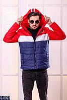 Мужская демисезонная куртка в стиле Адидас