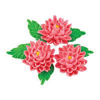 Декор кондитерський Добрик Набір Хризантеми