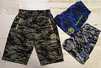 Трикотажные шорты для мальчика оптом, Seagull, 116-146 см,  № CSQ-58516, фото 1